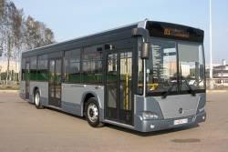 """Во Владивостоке 24 марта появятся """"золотые"""" автобусы"""
