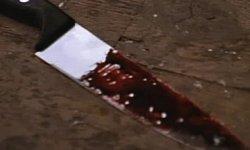 Житель Находки признан виновным в двойном убийстве